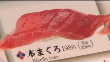 Sushi – Economic Value of Tuna
