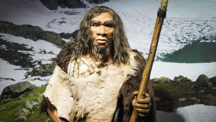 Abrupy extinction of the Neanderthaler